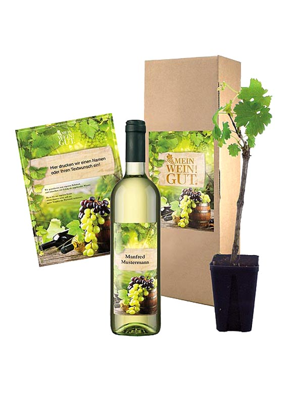 Vine Gift Set with Vine Branch Set of 2