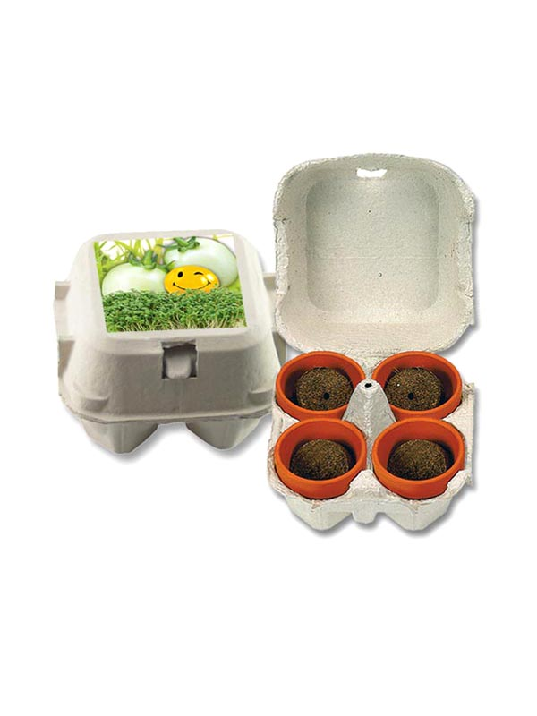 Easter Plant Gift Set Cress and Egg Plant Set of 12