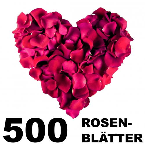 500 Rose Petals bordeaux-red