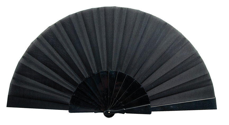Plastic Fan, black