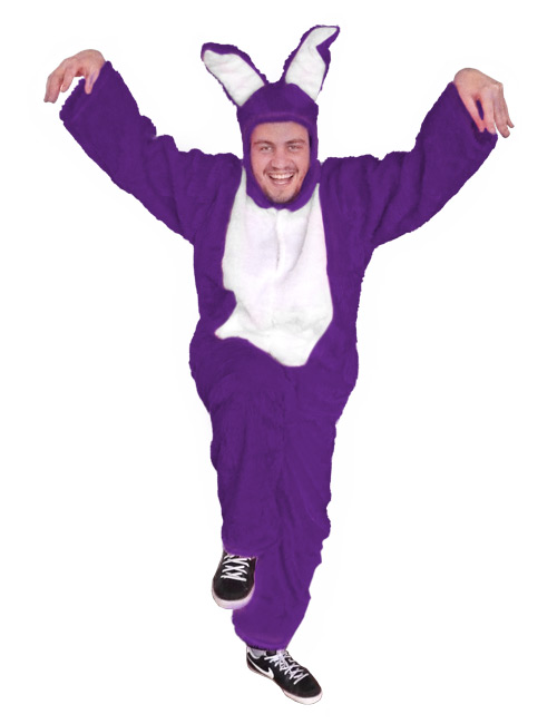 Bunny Costume purple