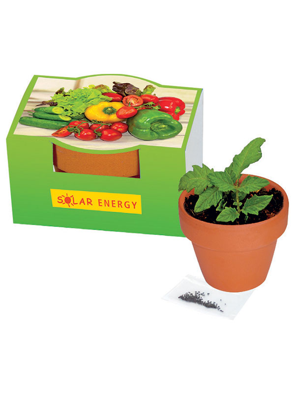 Plant Growing Set Cocktail Tomato Gift Article