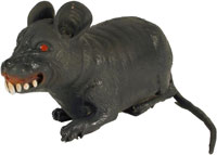 Beware of the rat