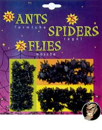 Creepy crawlers - ants, flies, spiders